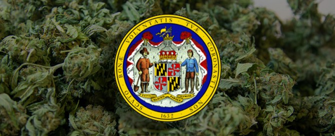 Maryland Cannabis Industry Preparing for Launch