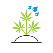 cannabis software biotrackthc